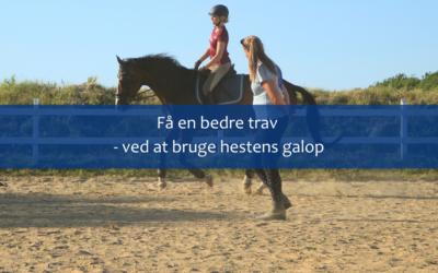 Få en bedre trav – ved at bruge hestens galop