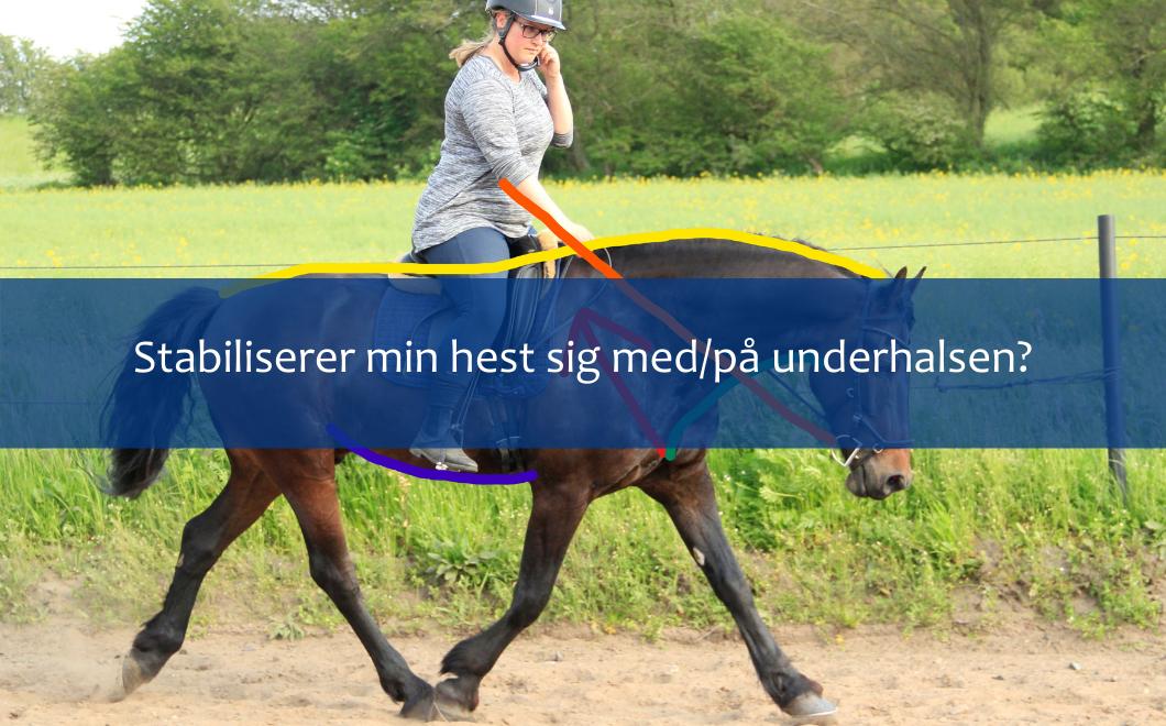 Stabiliserer min hest sig med/på underhalsen?